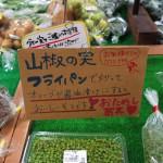富士山に一番近い道の駅 すばしりへ行ってきました(^o^)丿